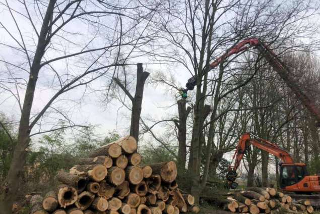 Machinaal bomen rooien in Veendam