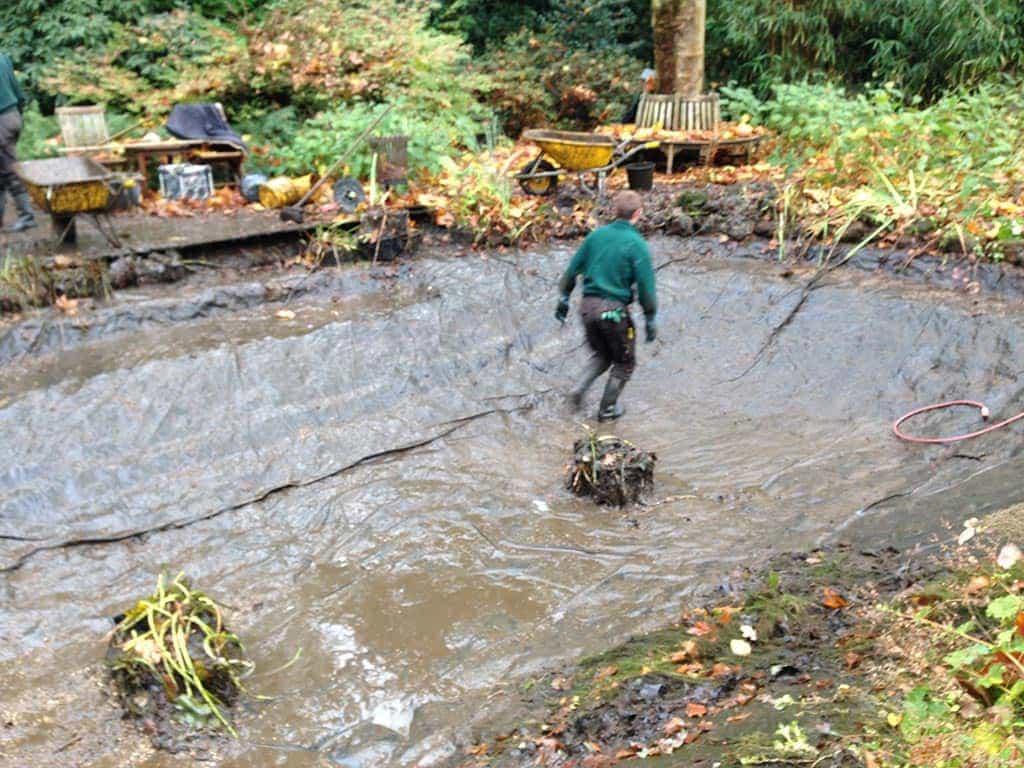 A van spelde hoveniers vijver schoonmaken geldrop for Natuurlijke vijver maken