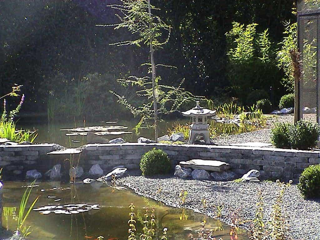A van spelde hoveniers vijver aanleggen for Vijver voor kleine tuin
