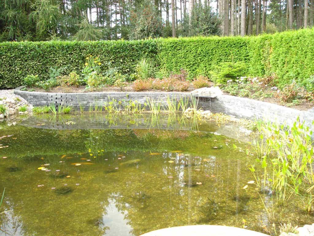 A van spelde hoveniers ronde vijver for Vijverpomp voor grote vijver