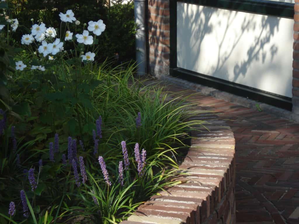 A van spelde hoveniers tuinen met ronde vormen for Kleine voortuin aanleggen