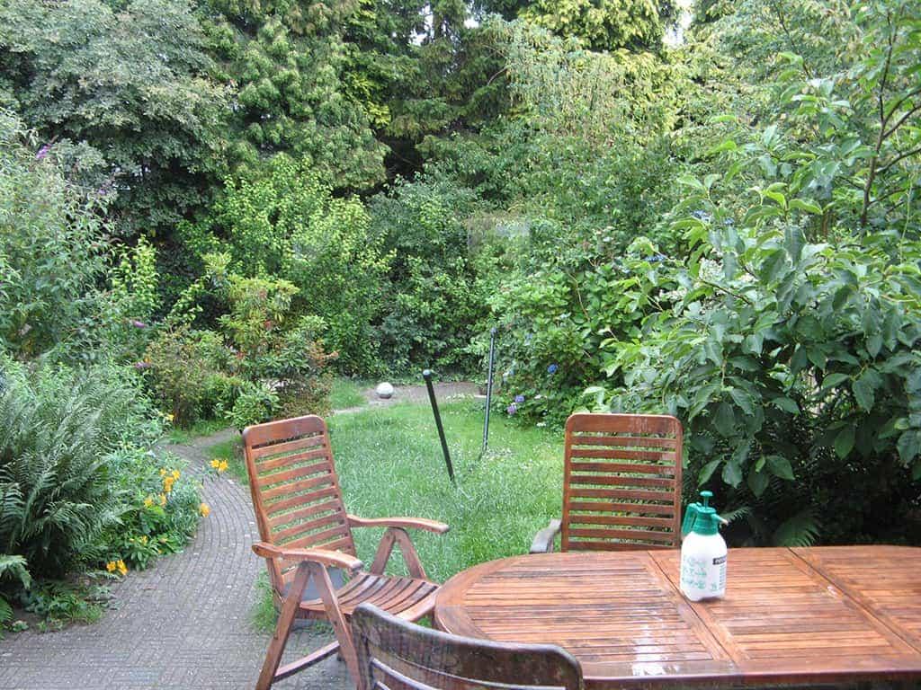 A van spelde hoveniers schellevis beton tegels gras en bamboes - Hoe amenager tuin ...